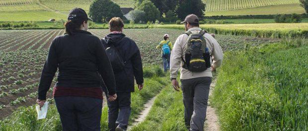 Proefloop Stadsgrens Tweedaagse Maastricht 26 en 27 oktober